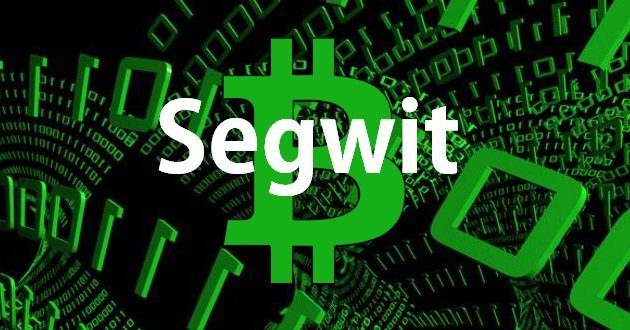 Testigo segregado SegWit bitcoin