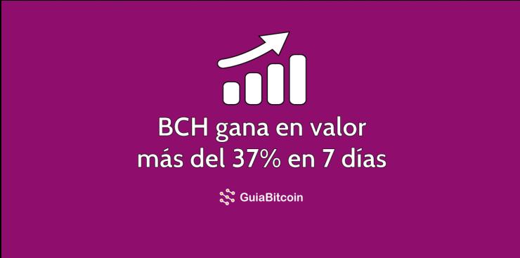 Bitcoin-Cash-retumba-y-ahora-se-cotiza-a-$-1,000-USD